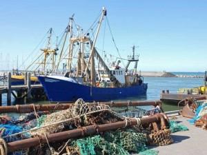 Казна помогает рыбной отрасли экономики