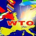 Россия пожалуется на Украину в ВТО по поводу ГТС