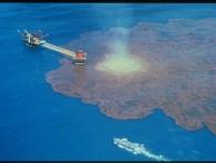 Россия способна обеспечить бурение в Карском море без ExxonMobil