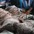Розницу заподозрили в необоснованном завышении цен на рыбу