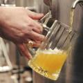 Пивовары предупредили о возможной массовой остановке предприятий летом 2015 года