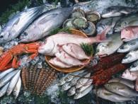 Продуктовое эмбарго не изменило объем потребления рыбы, но изменило предпочтения