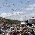 Уплату экологического сбора могут перенести до окончания кризиса