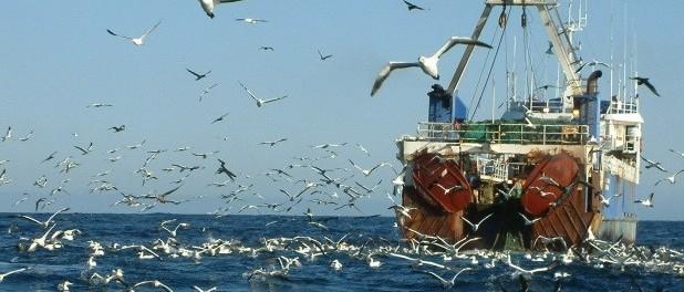 Рыбакам предложат квоты за покупку отечественных кораблей