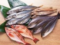 Эксперты прогнозируют подорожание рыбы в России на 15-20%