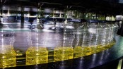 Цена подсолнечного масла в России бьет рекорды