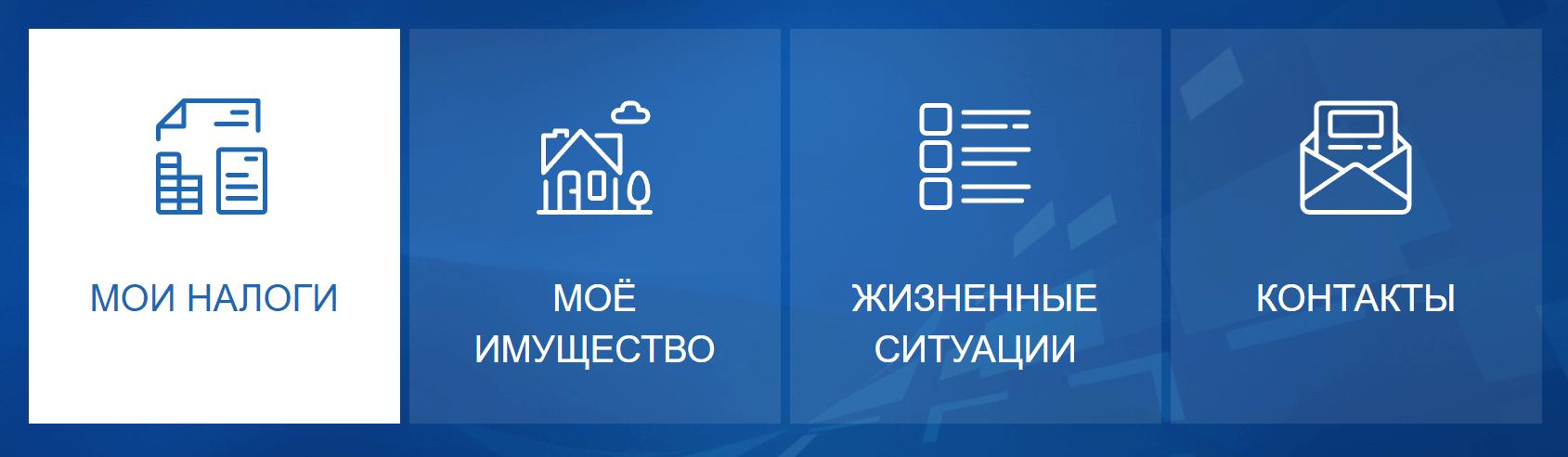 Основные возможности сайта ИФНС nalog ru