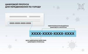 Цифровой пропуск в Москве и Подмосковье